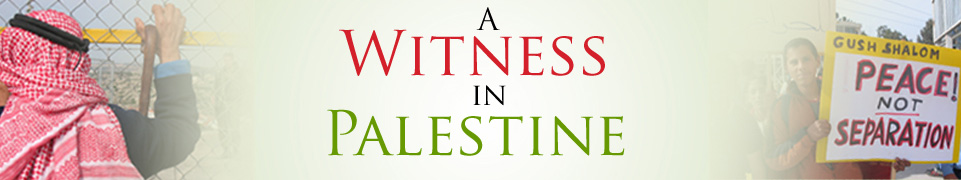 A Witness in Palestine - Anna Baltzer